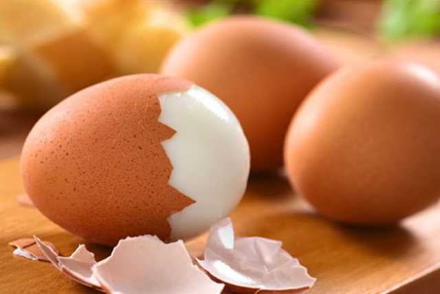 طريقة معرفة البيض الطازج من الفاسد وطريقة تخزينه الصحيحة