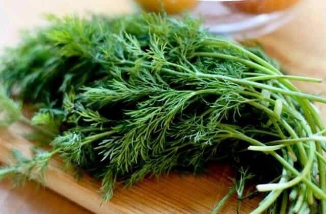 فوائد الشبت الصحية - 7 فوائد من نبات الشبت للضغط والعظام والسكري