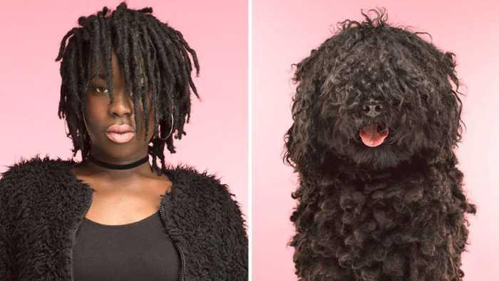 صور مضحكة: صور تظهر مدى تشابه الكلاب لأصحابها